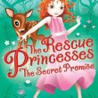 Rescue Princesses: The Secret Promise