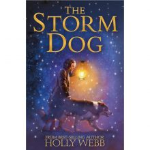 The Storm Dog - Story Snug