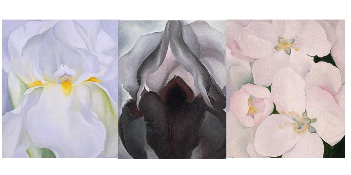 Britta Teckentrup Flowers - Georgia O'Keeffe - Story Snug