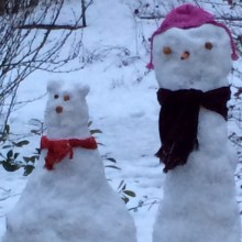 Snow Lady and cat Story Snug